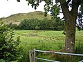The lower slopes of Mynydd Rhiw-Saeson - geograph.org.uk - 520634.jpg