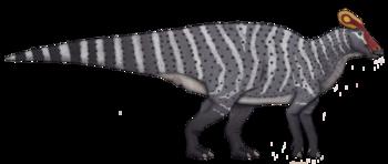 Tlatolophus.png