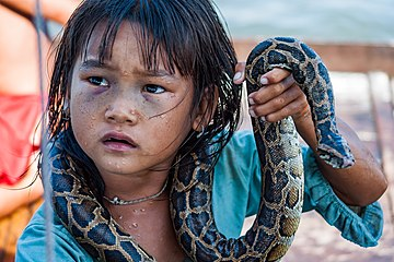 A Cambodian girl begging for money with snake