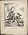 Topaza mellivora - 1700-1880 - Print - Iconographia Zoologica - Special Collections University of Amsterdam - UBA01 IZ19100249.tif