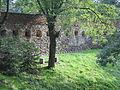 Toszek, zamek, mury nad fosą (2).JPG