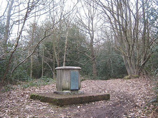 Toy's Hill Troposcope - geograph.org.uk - 1757281
