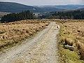 Track, Over Cassock - geograph.org.uk - 762271.jpg