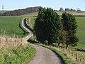 Track near Wexcombe - geograph.org.uk - 274234.jpg