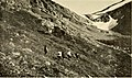 Trails and tramps in Alaska and Newfoundland (1913) (14725725666).jpg