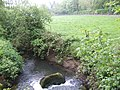 Tributary of the Boro River - geograph.org.uk - 442931.jpg