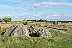 Tustrup gravpladsen (Norddjurs Kommune).Fritstående dyssekammer.3.47887.ajb.jpg