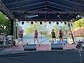 UFO a Balaton Fesztiválon (3).jpg