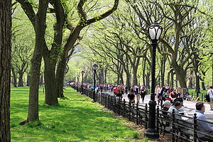 Central Park Mall - Image: USA NYC Central Park The Mall