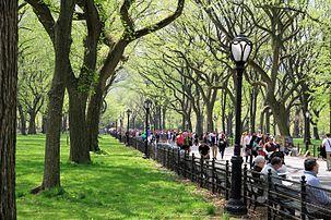 USA-NYC-Central Park-The Mall.JPG
