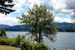 Sammamish, Washington - Image: USA Washington lake sammamish 35