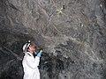 USFWS Biologist studying bat (4031343649).jpg