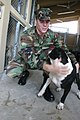 US Navy 031106-N-5821W-004 Photographer's Mate 3rd Class Gunnar Gorder, assigned to Naval Air Station (NAS) Sigonella's Stray Animal Facility socializes with a dog in the shelter.jpg