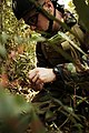 US Navy 050312-N-5781F-007 Aviation Ordnanceman 1st Class Brian Fitzgerald, assigned to Explosive Ordnance Disposal Mobile Unit Five (EODMU-5), assesses the type of explosive booby trap he has to disarm during jungle warfare tr.jpg