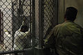 US Navy 100330-N-7456N-089 A Sailor assigned to the Navy Expeditionary Guard Battalion stands watch over a cell block in Camp 6 at Joint Task Force (JTF) Guantanamo while detainees look through magazines and books.jpg
