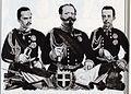 Umberto I di Savoia, Vittorio Emanuele II di Savoia e Amedeo di Savoia Aosta.jpg