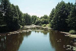 Voronezh Nature Reserve - Usmanka River, Voronezh Nature Reserve