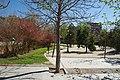 VIEW , ®'s - DiDi - RM - Ð 6k - ┼ MADRID PARQUE de PEÑUELAS JARDÍN - panoramio (2).jpg