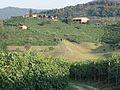 Valdobbiadene - San Giovanni3.jpg