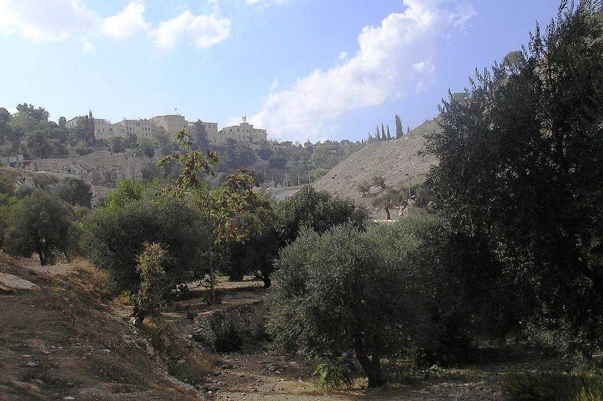 ar.wikipedia.org