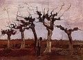 Van Gogh - Landschaft mit Weiden.jpeg
