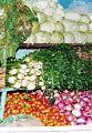 Vegetable shop in Asmara, Eritrea.JPG