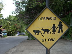 Hotels Near Quepos Costa Rica