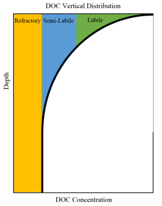 Dissolved organic carbon - A diagram showing the basic composition of dissolved organic matter in the ocean.