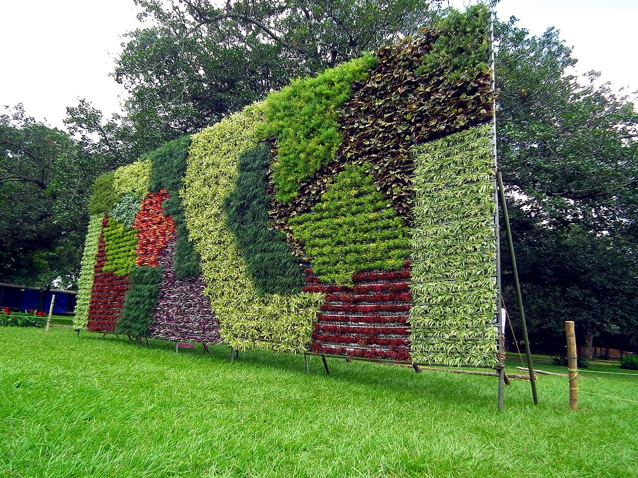 File vertical garden during lalbagh flower show august for Jardines impresionistas