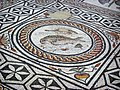 Vienne, Saint-Romain-en-Gal, Roman Mosaic (Fish).JPG