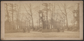 View in Greenwood Cemetery, by A. Watson.png