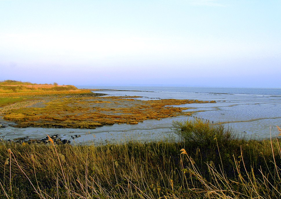 View of Severn Estuary Rocks From Newport Wetlands RSPB Reserve