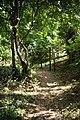 Viking Way - geograph.org.uk - 1444092.jpg