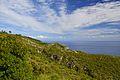 Vista verso il mare - panoramio (1).jpg