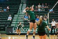 Volleyball-33 (9786051506).jpg