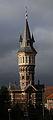 WLM - Ciao Anita! - Schoonhoven, Watertoren.jpg