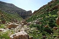 Wadi-Makukh-549.jpg