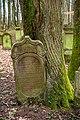 Waibstadt - Jüdischer Friedhof - alter Teil - eingewachsener Grabstein 2.jpg
