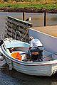 Waiting for fish (9407278683).jpg