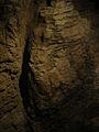 Waitomo Caves - Flickr - Teacher Traveler (2).jpg