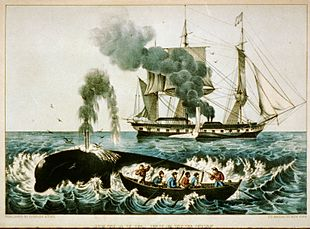 Caccia alla balena in una litografia colorata a mano risalente agli anni 60 del XIX secolo