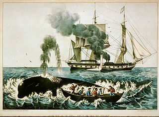 Whaling in the United States