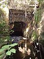 Wassergraben Grüner Mühle.jpg