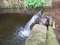 Waterfall in Lindwaysprings Brook - geograph.org.uk - 188245.jpg