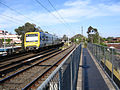 WaverleyRailTrail-WarrigalRdBridge.jpg
