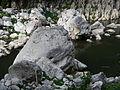 WawaDamjf5977 10.JPG