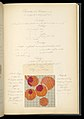 Weaver's Thesis Book (France), 1895 (CH 18438163-150).jpg