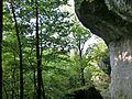 """Weg zur """"Schönen Aussicht"""" - panoramio.jpg"""