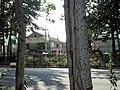 Weicheng, Weifang, Shandong, China - panoramio (103).jpg