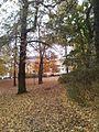 Weissensee, Berlin, Germany - panoramio (13).jpg